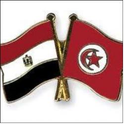 AMBASSADE D'EGYPTE Ween.tn