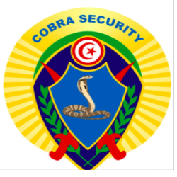 COBRA SECURITY Ween.tn