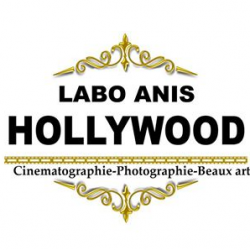 LABO ANIS HOLLYWOOD Ween.tn